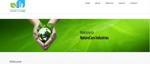Axiom-Creation-Website-Designing-And-Development-Company-jodhpur-rajasthan-india