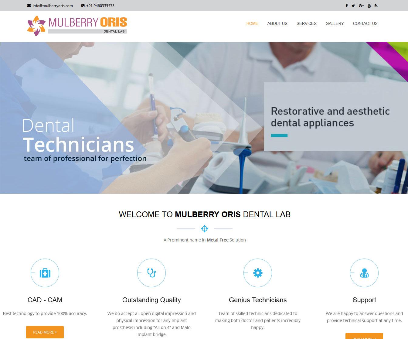 Website development for Dental Lab