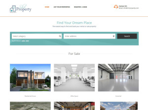 Website development for Property Dealer