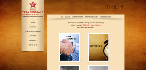 Website development for Minerals and Chemicals